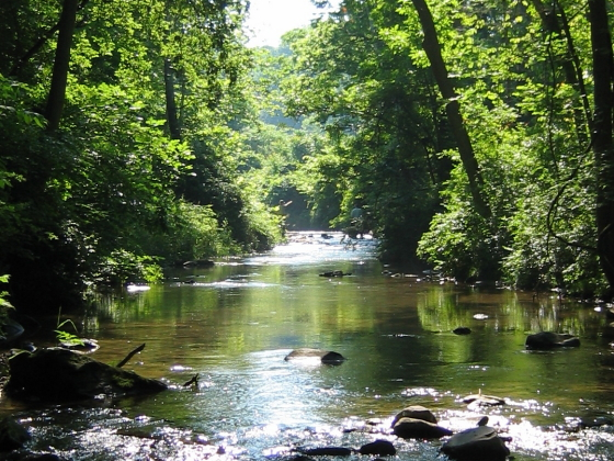 Conoy Creek