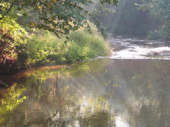 West Branch Octoraro Creek
